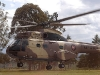 kenya chopper
