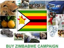 buy zim campaign