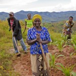 Tanzania Government urged to review land ownership laws