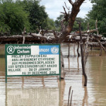 CHAD: Floods, locusts add to humanitarian challenges