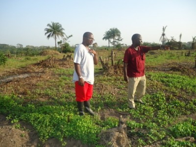 Bishop Seyenkulo been shown a 4.25 acres of farm by LDS Boss, Mr. Joseph Binda (farm operated by the LDS)