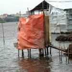 LIBERIA: Poor sanitation affects Clara Town, Doe Community residents