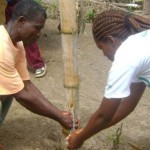 LIBERIA: World Toilet Day Celebrations – Communities keep their promise to become Open Defecation Free