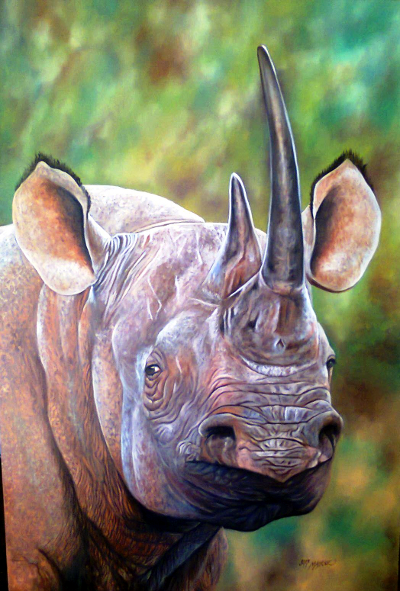 A picture of a Rhino that John Mahove donate to a wildlife organisation