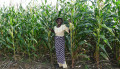 Tanzania Commercial agriculture