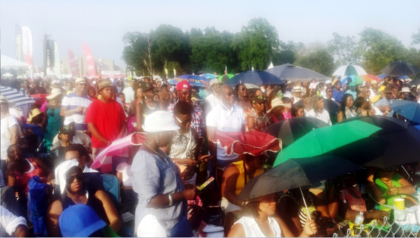 Thousands of jerk festival patrons thronged Roy Wilkins Park in Queens, New York