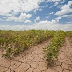Tanzania: Funds for climate change misused