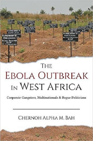 The Ebola outbreak in West Africa