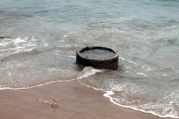 Tiger Worms Septic Tanks swallowed by the Atlantic Ocean